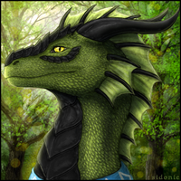 Cordenth Icon by Sidonie