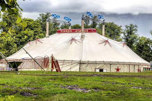 Zippos Circus tent by sequential