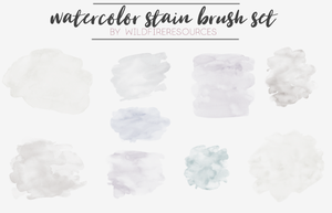 stain brushes set by wildfireresources by wildfireresources