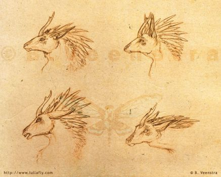 Concept: Regali Expressions by xdragonflyx
