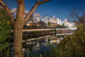 Beyond the nature, a city appears - Version 2 by stephane-bdc