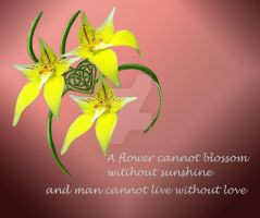 Cowslip Orchid Love Quote Celtic Knotwork Heart by LorraineKelly