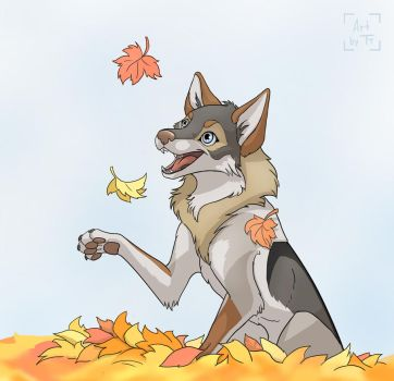 Autumn Snap by Tora-Tikel