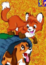 The Fox and the Hound by spongefox