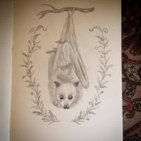 Sketchbook Flying Fox Bat by Sidhe-Etain