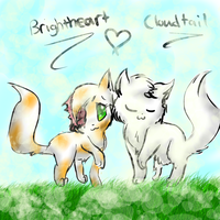 Cloudtail and Brightheart by Kitzophrenic