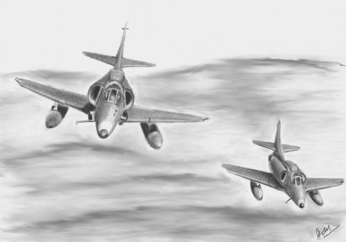 Skyhawks by p40kittyhawk