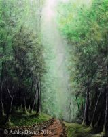 Deep forest Path by AshleyDaviesArtist