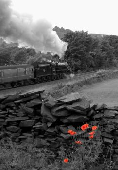 Lest We Forget by matt-durkan-railways