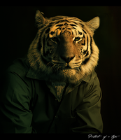 Portrait of a Tiger by Ceruleano