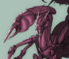 Spider Dragon WIP by Namh