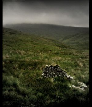Remnant of the Irish famine by younghappy