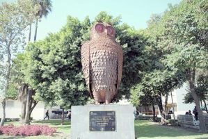 Owl Statue by daniedesigns