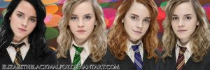 Hermione in the four houses by ElizabethBlackMalfoy