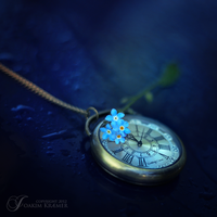Forget time by Healzo