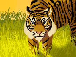 Tiger in the meadow by Muuluzi