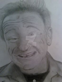 my robin williams by babyblue7