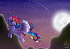 Night Flight || Re-Draw || Separate Pic by LeafyMerilynn