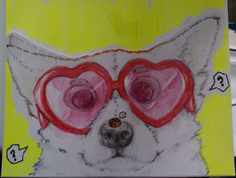 Dog with glasses by Nils991
