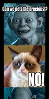 Smeagol Grumpy Cat by Erebus88