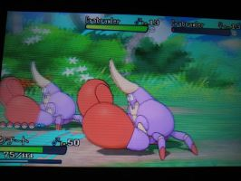 TWO SHINY CRABRAWLERS APPEARED!