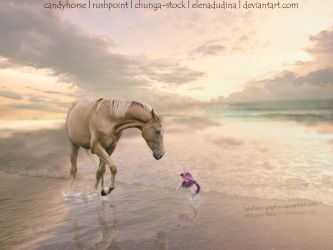 Sunrise Beach by Sapphires-Graphics