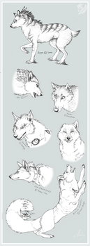 Wolf request dump by Chaluny