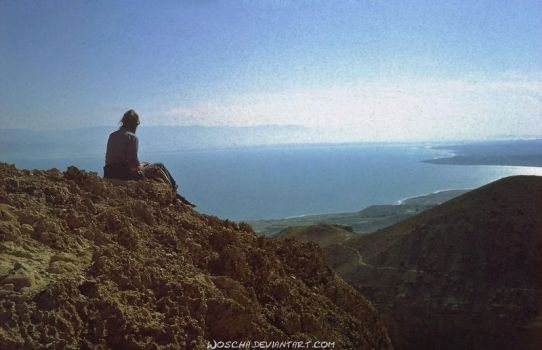 Sitting On Top Of The World by Woscha
