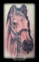 Horse by state-of-art-tattoo