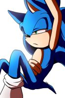 .:Sonic:. Light Bother me... by kiuki-10