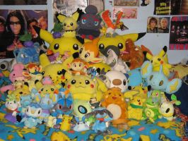 Pokemon Plush Collection by kayleigh29