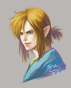 Link by SheCow