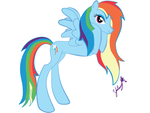 Rainbow Dash Download by IshioShima