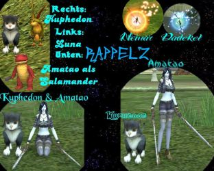 Rappelz - Mainchar and Pets by Amatao