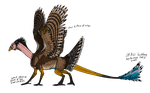Turkey Dragon by JadeRavenwing