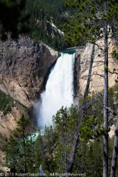 Yellowstone Falls by rjakobson