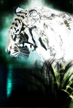 The White Tiger by MarvelsInfinityLotus