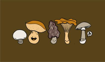 Know your mushrooms by Eudocia