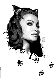 catwoman by hansbrown-77