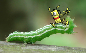 Sam's caterpillar by zevahcproductions