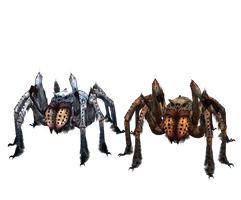XPS TES V: Frostbite Spiders dl (UPDATE) by Tokami-Fuko