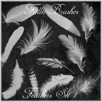 Feathers Brushes Set 1 by Falln-Brushes