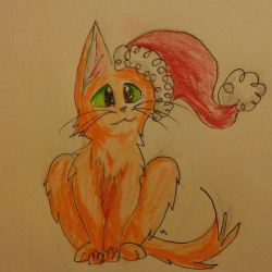 Firestar is ready for Christmas by Winter-Sky529