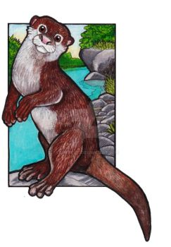 Oriental Small-clawed Otter by lemurkat