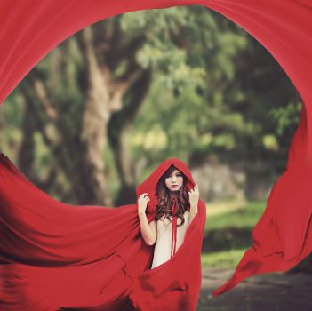 Little Red Riding Hood by bwaworga
