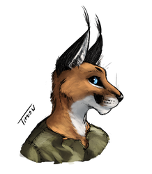 Shadi Portrait [Gift] by TitusWeiss
