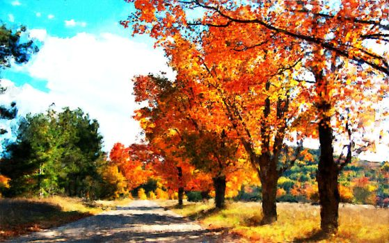 Autumn road by coolwindsg