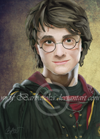 Harry Potter by barbaroka