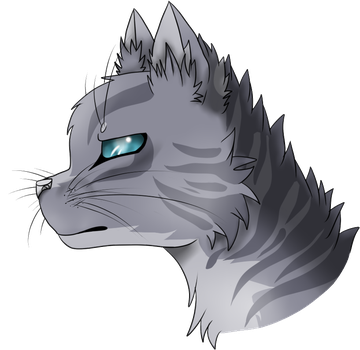 Jayfeather by CollisionXIII