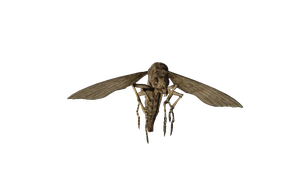 Resident Evil 7 Bug PNG by GamingDeadTv